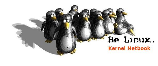 Netbook-kernel